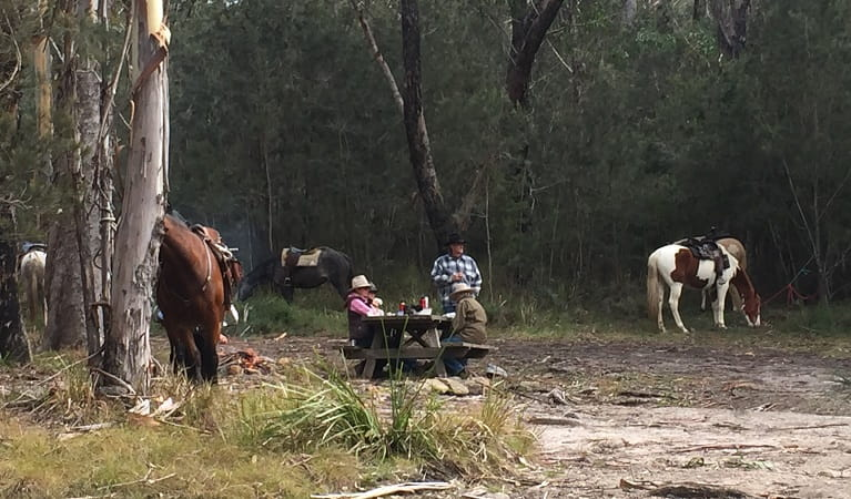 Riders taking a break, Basket Swamp National Park. Photo: V Sherry/ATHRA