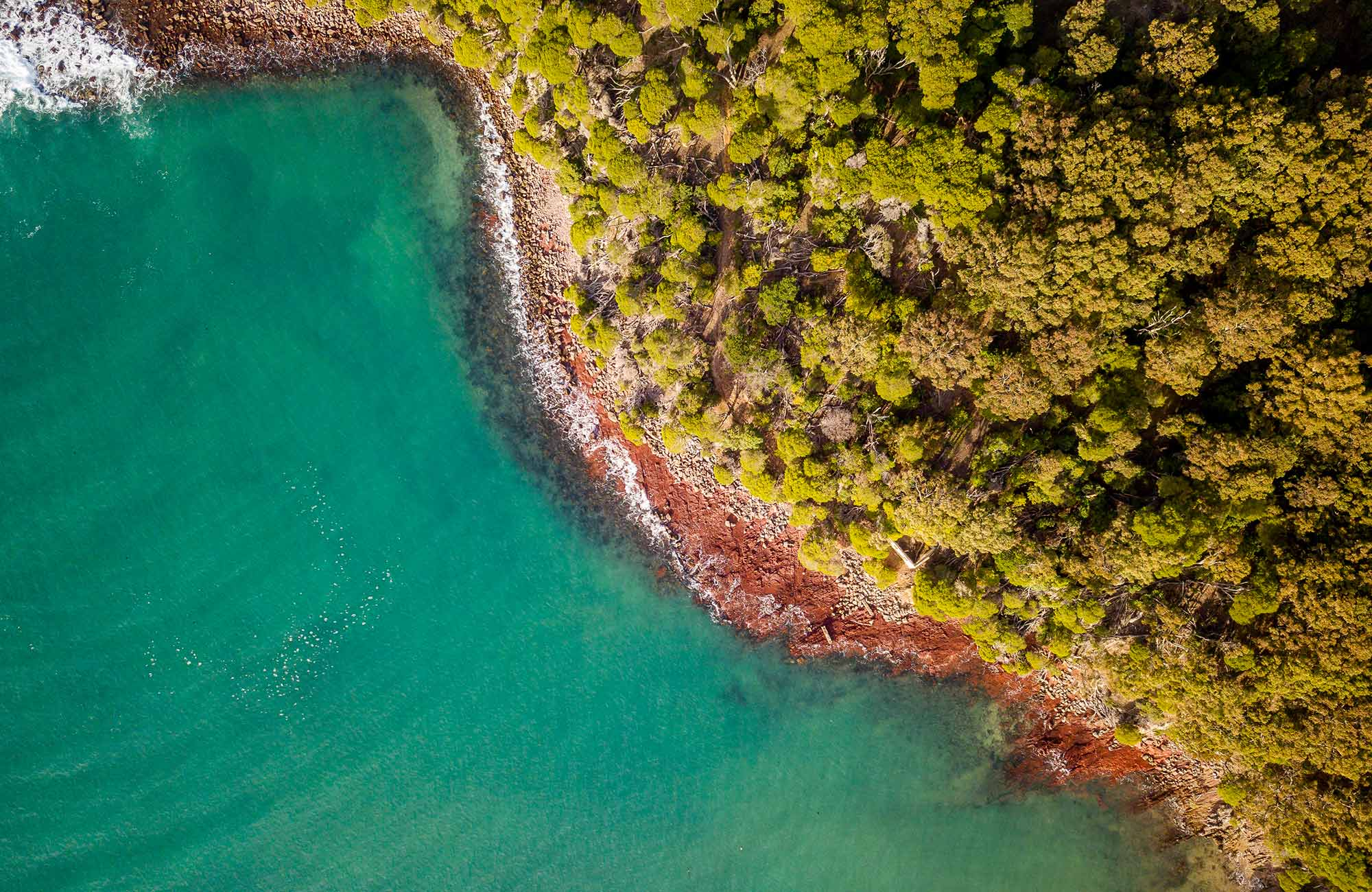 Aerial view of the ocean and trees at Bittangabee Bay. Photo: John Spencer/OEH