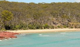 Barmouth Beach, Ben Boyd National Park. Photo: John Yurasek