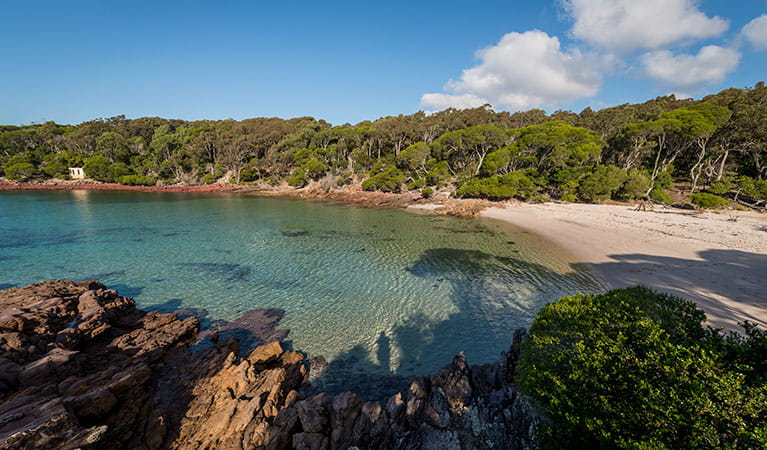 Bittangabee Bay, Ben Boyd National Park. Photo: John Spencer/OEH