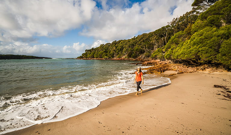 Walker on the shore of Bittangabee Bay, near Bittangabee campground, Ben Boyd National Park. Photo: J Spencer/OEH