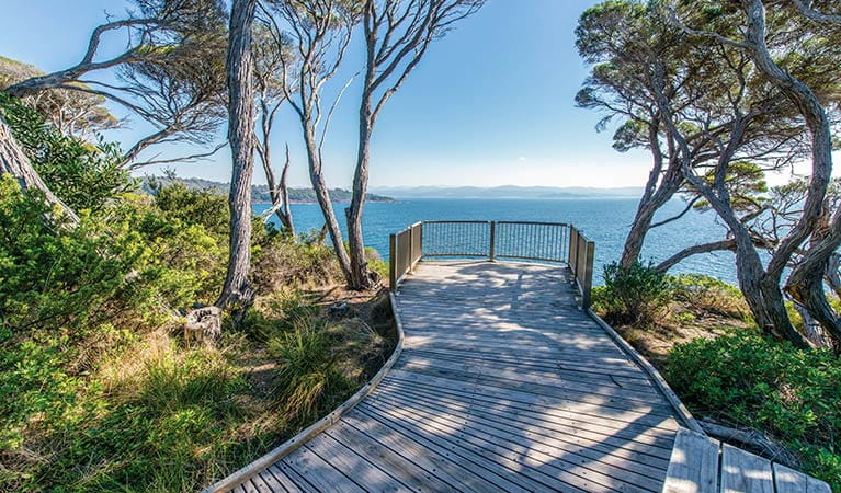 The wheelchair-accessible lookout near Boyds Tower gives views of Two Fold Bay. Photo: John Spencer/OEH