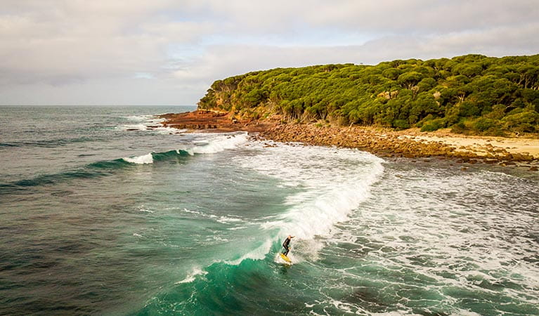 Surfer and headland at Saltwater Creek campground. Photo: John Spencer/DPIE
