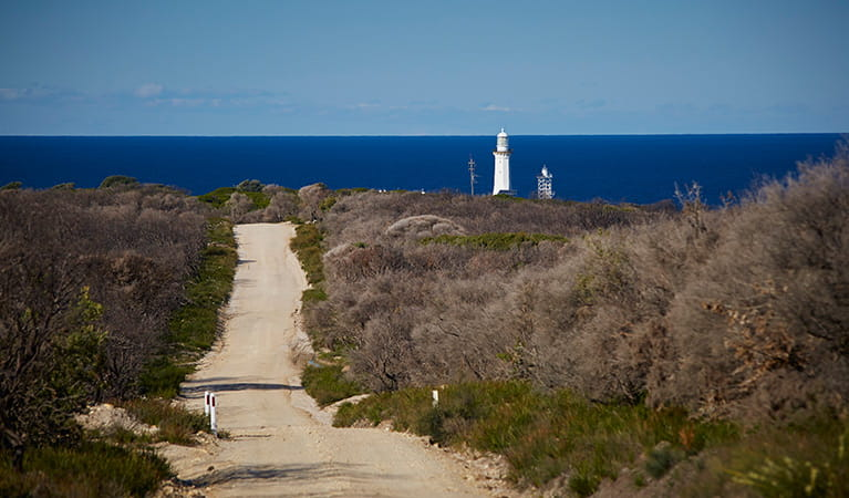 Dirt road leading to Green Cape Lightstation, the Pacific Ocean in the distance. Photo: Nick Cubbin/OEH