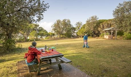 A family with a picnic at Haycock Point picnic area, Ben Boyd National Park. Photo: John  Spencer/OEH
