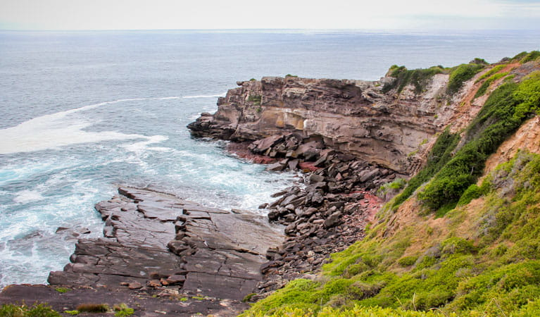 Haycock Point to Barmouth Beach walking track, Ben Boyd National Park. Photo: John Yurasek/DPIE