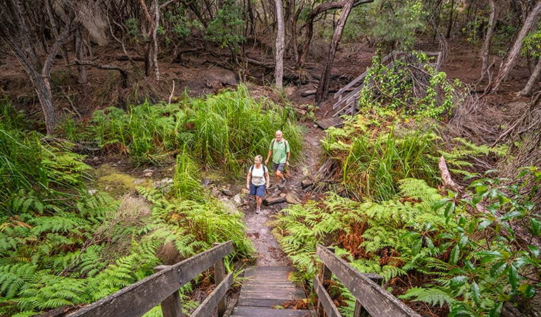 Bushwalkers on a section of the Light to Light walk, near Bittangabee campground. Photo: John Spencer/DPIE