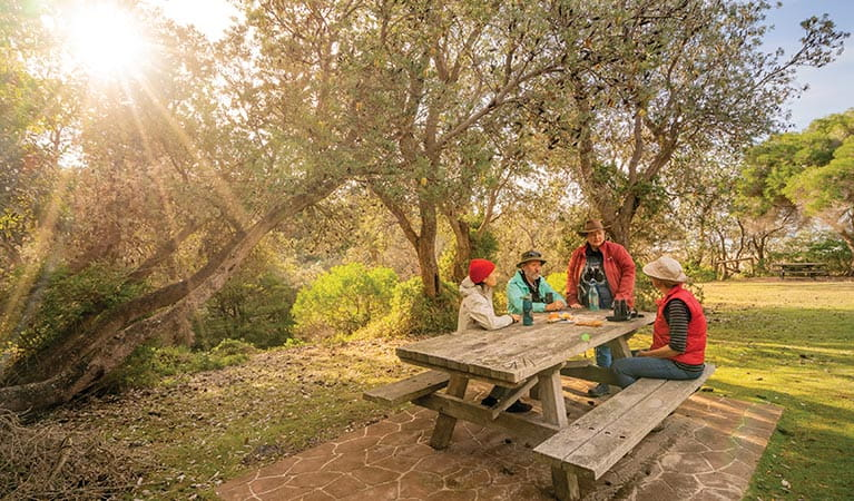 Friends sitting on picnic tables at Haycock Point picnic area. Photo: John Spencer/DPIE