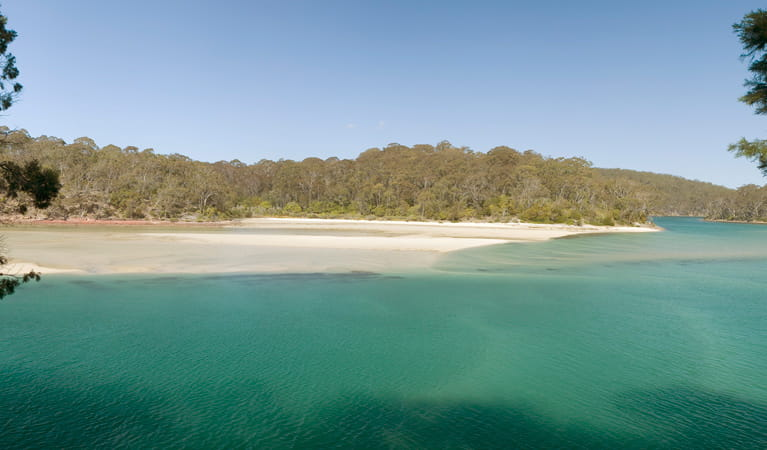 Pambula River walking track, Ben Boyd National Park. Photo: Michael van Ewijk
