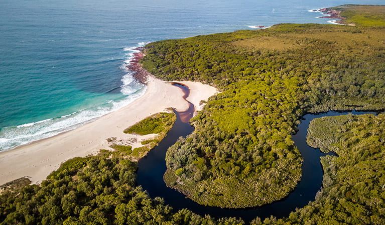 Aerial view of Woodburn Creek at Saltwater Creek campground, Ben Boyd National Park. Photo: J Spencer/OEH