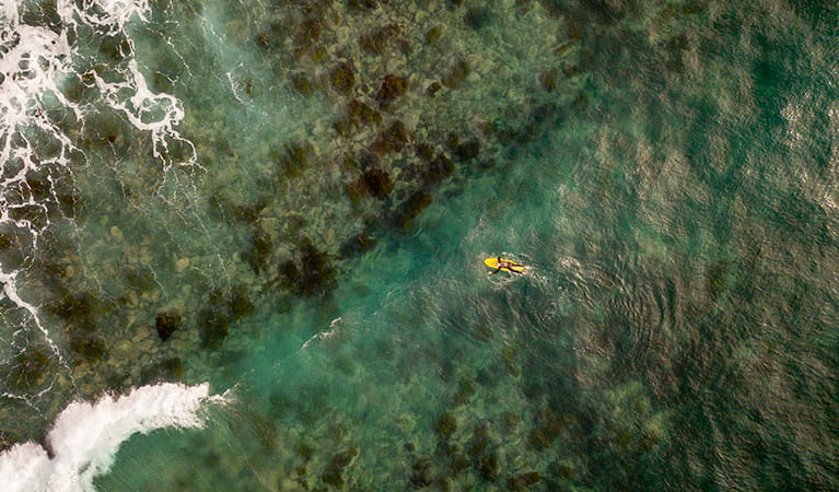 Aerial view of surfer in ocean near Saltwater Creek campground, Ben Boyd National Park. Photo: John Spencer/OEH