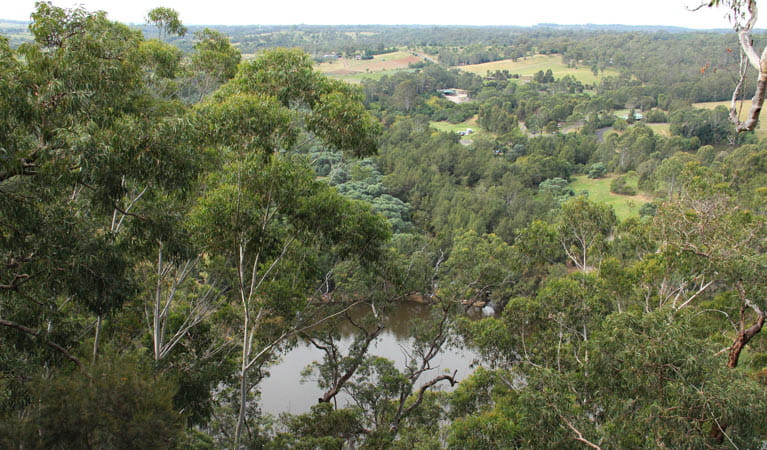 View from Caleys lookout track. Photo: John Yurasek
