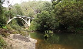 Bridge over water in Berowra Valley Regional Park. Photo: John Yurasek