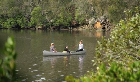 Berowra creek, Berowra Valley National Park. Photo: John Yurasek