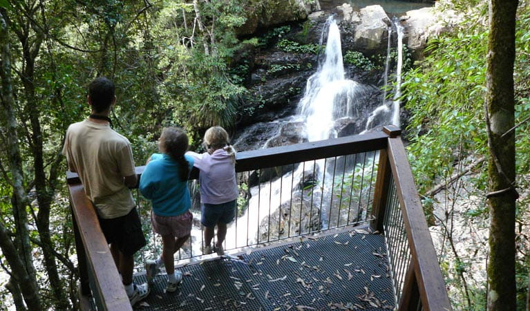 Bangalore Falls, Bindarri National Park. Photo: Barbara Webster/NSW Government