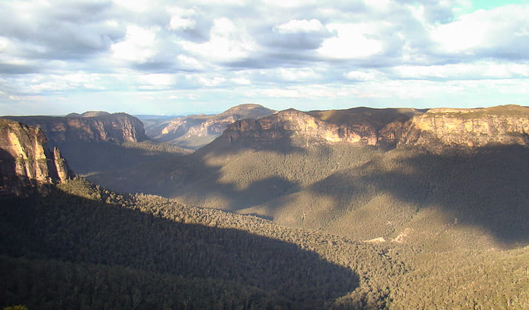 Acacia Flat campground, Blue Mountains National Park. Photo: Steve Alton/NSW Government