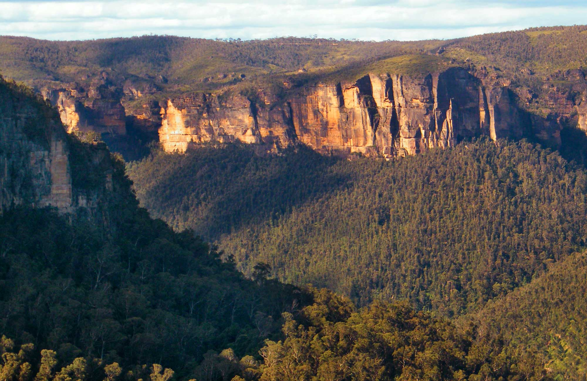 Sandstone escarpment above Grose Valley, Blackheath, Blue Mountains National Park. Photo: Craig Marshall
