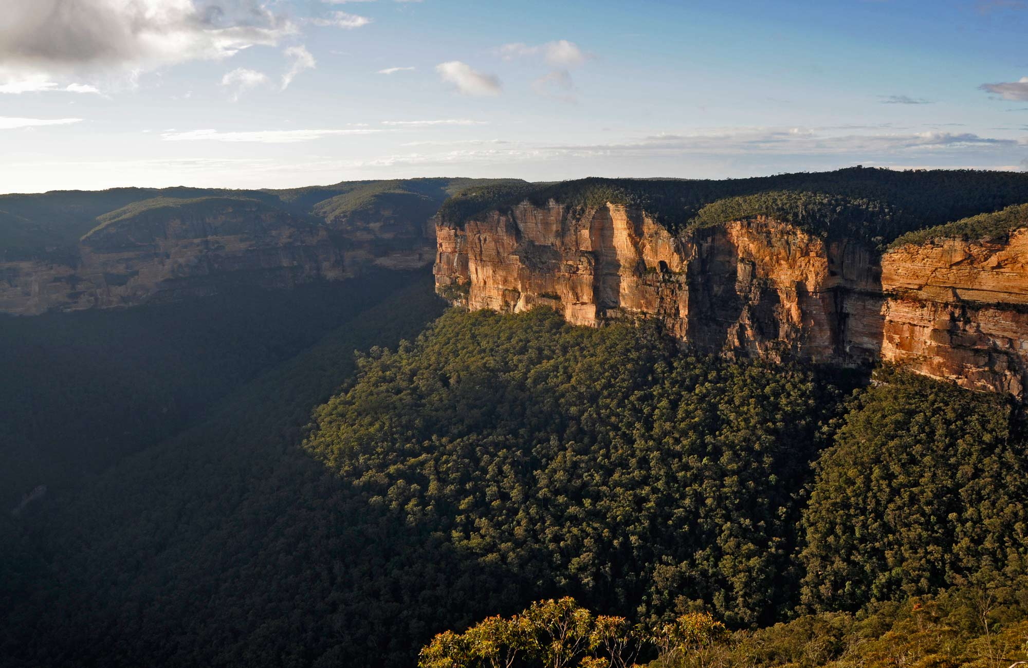 Evans lookout, Blue Mountains National Park. Photo: Kevin McGrath/NSW Government