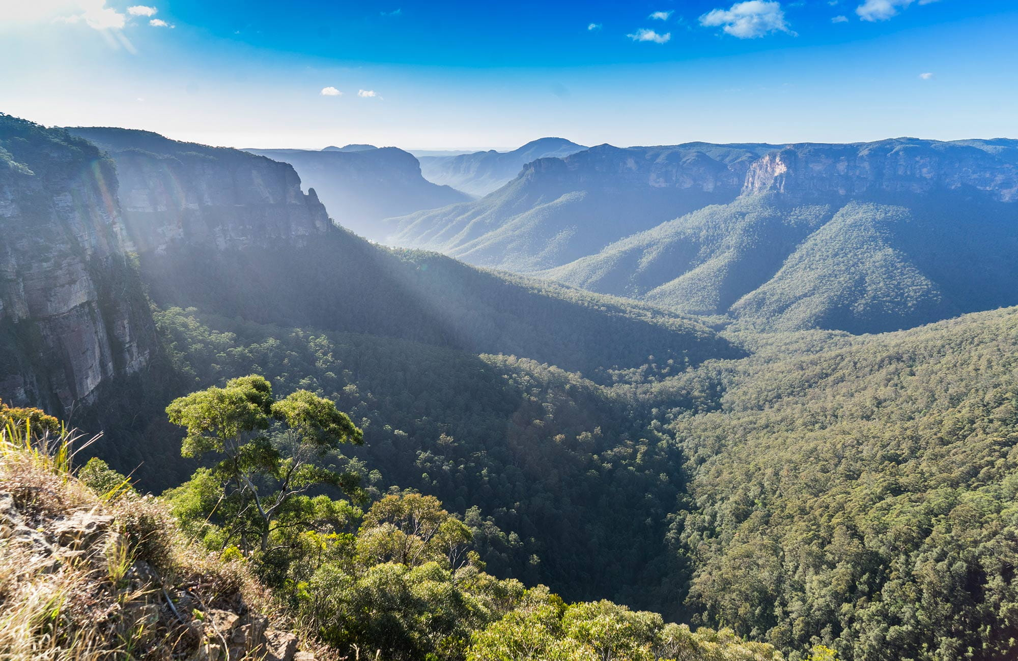 Views from Govetts Leap lookout, Blue Mountains National Park. Photo: Simone Cottrell/OEH.
