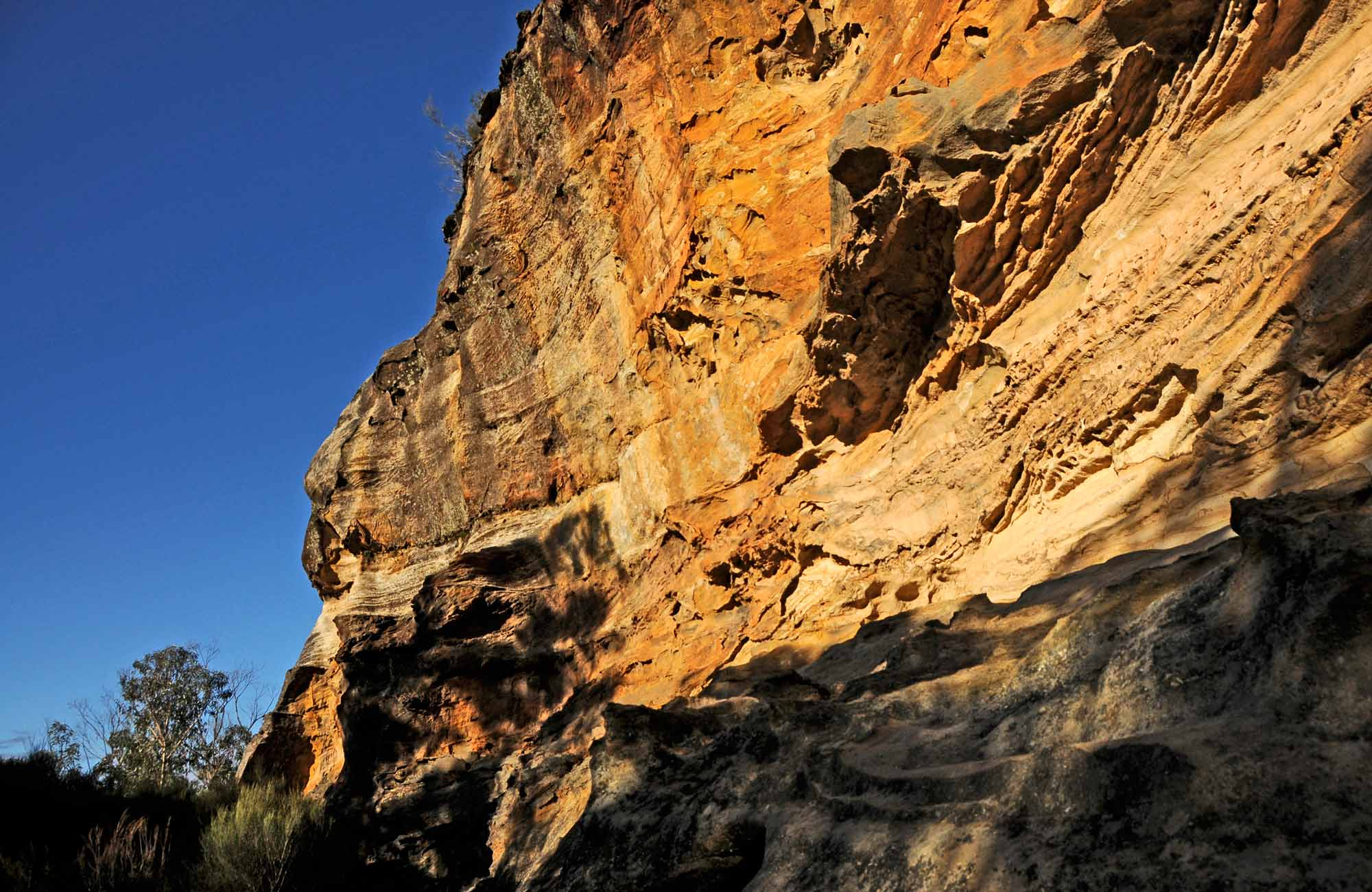 Rock wall on Perry's lookdown walk, Blue Mountains National Park. Photo: Kevin McGrath/OEH