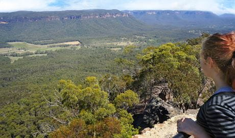 Hargreaves lookout, Blue Mountains National Park. Photo: Steve Alton