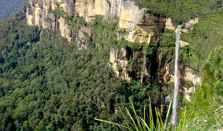View of Govetts Leap waterfall, Blue Mountains National Park. Photo: Steve Alton/OEH.