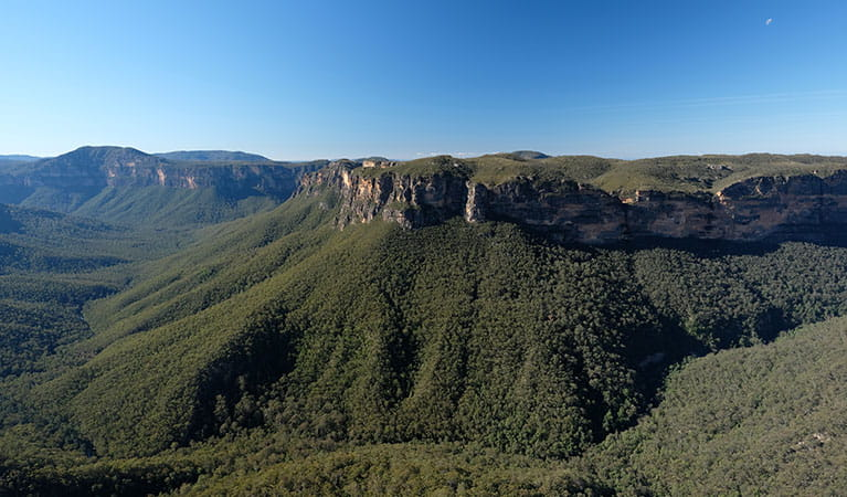 View of Grose Valley from Evans lookout, Blue Mountains National Park. Photo: E Sheargold/OEH