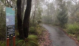 Sign at start of Fairfac Heritage walking track, Blue Mountains National Park. Photo: E Sheargold/OEH.