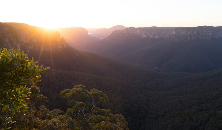 Sunset views of Grose Valley, Govetts Leap lookout, Blue Mountains National Park. Photo: Simone Cottrell/OEH.