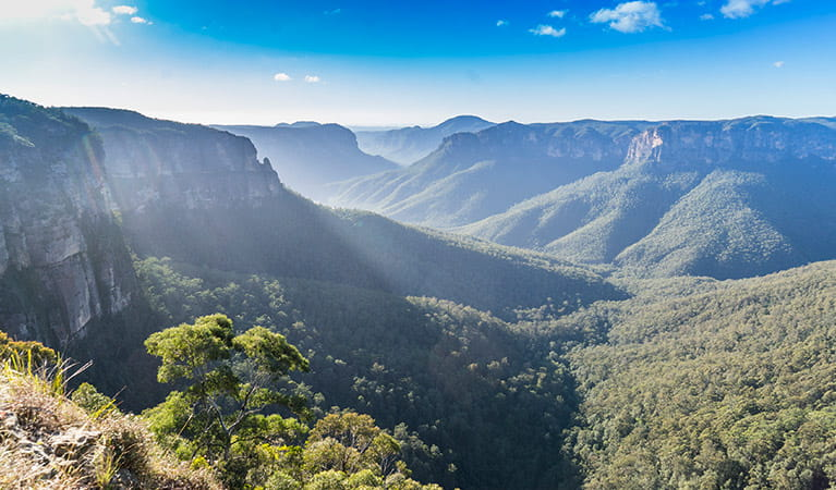 Panoramic view of Grose Valley from Govetts Leap lookout, Blue Mountains National Park. Photo: Simone Cottrell/OEH