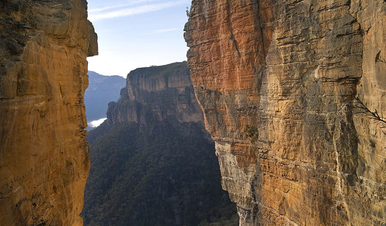 View of Grose Valley escarpment, framed by Handing Rock, Blue Mountains National Park. Photo: David Finnegan/OEH