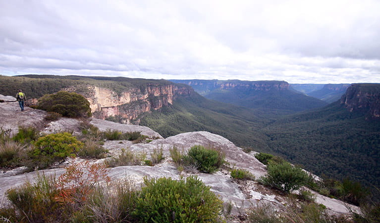A hiker at Butterbox Point, near Mount Hay, Blue Mountains National Park. Photo: E Sheargold/OEH