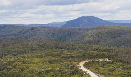 Mount Hay Road Leura, Blue Mountains National Park. Photo: Steve Alton/NSW Government
