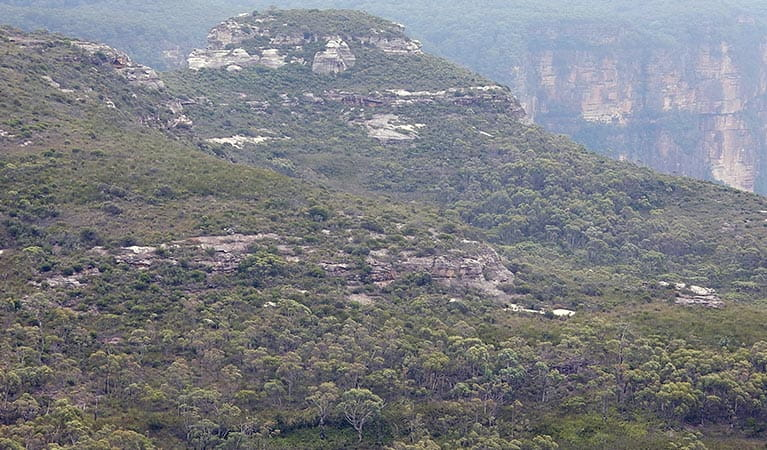 Weathered rock formations seen from Mount Hay summit walking track, Blue Mountains National Park. Photo: Arthur Henry/OEH.