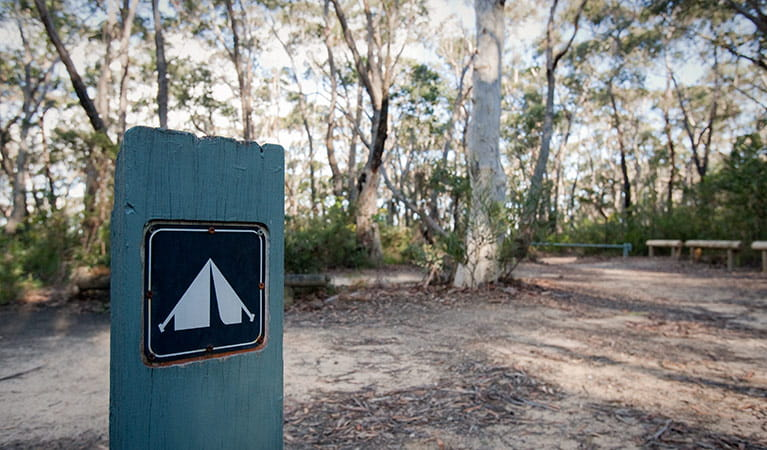 Perrys Lookdown campground, Blue Mountains National Park. Photo: Nick Cubbin