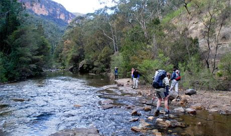 Grose River Crossing, Pierces Pass to Blue Gum Forest, Blue Mountains National Park. Photo: Steve Alton/NSW Government