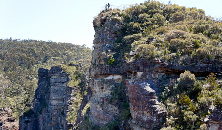 Pulpit Rock Lookout, Blue Mountains National Park. Photo: Steve Alton/NSW Government