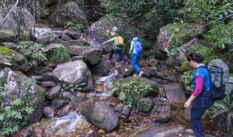 Three hikers scramble over rocks on Rodriguez Pass walking track, Blue Mountains National Park. Photo: Simone Cottrell/OEH.