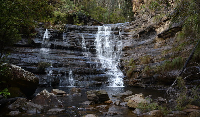 Victoria Creek cascades over a series of ledges in Blue Mountains National Park, near Mount Victoria. Photo: Grant Purcell © DPIE