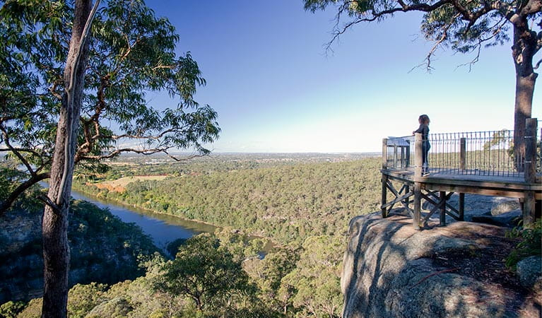 Mount Portal lookout, Blue Mountains National Park. Photo: Nick Cubbin/OEH
