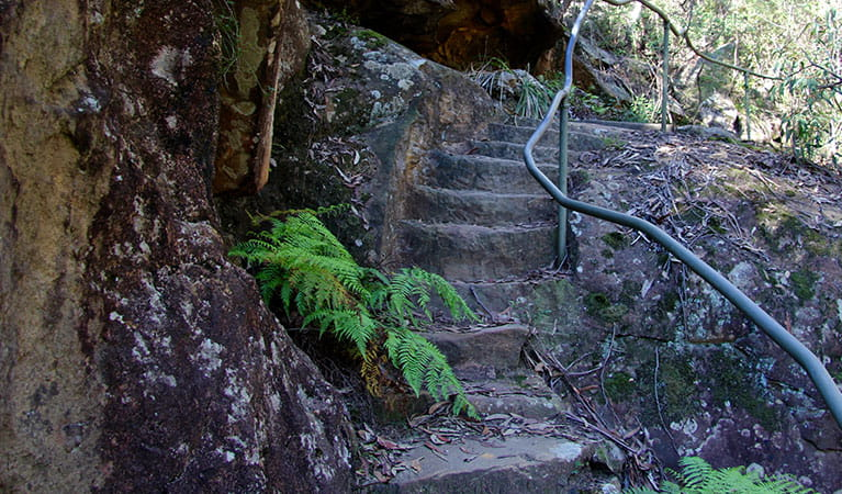 Stairs along Blue Pool walking track in Blue Mountains National Park. Photo: OEH/Natasha Webb