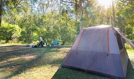 Family relaxing by their tent in Redgum section of Euroka campground. Photo: OEH/Simone Cottrell