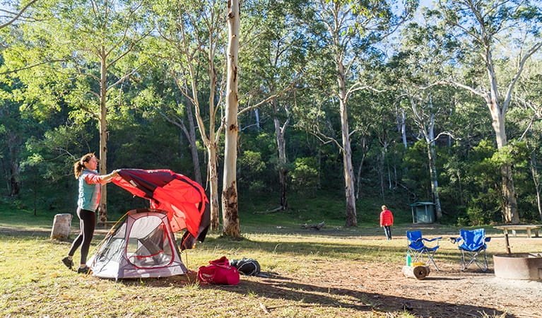 Camper sets up a tent in the Darug section of Euroka campground. Photo: OEH/Simone Cottrell