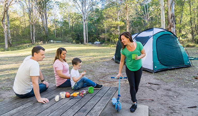 Family eating a picnic lunch in the Appletree Flat section of Euroka campground. Photo: OEH/Simone Cottrell