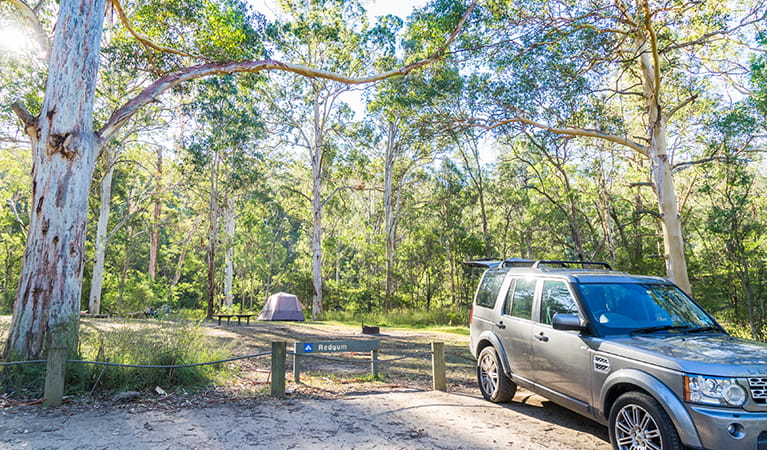 Car parked near a tent in the Redgum section of Euroka campground. Photo: OEH/Simone Cottrell