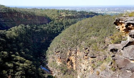 Glenbrook Gorge track, Blue Mountains National Park. Photo: Steve Alton
