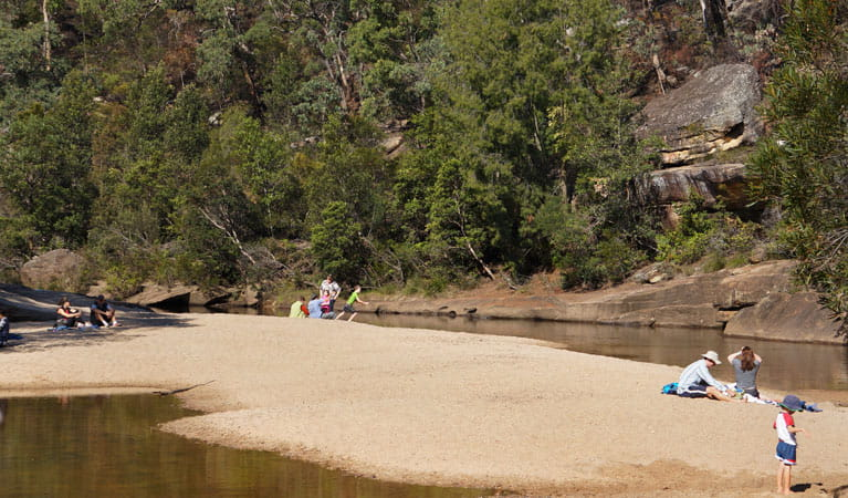 Kids playing at Jellybean Pool, Blue Mountains National Park. Photo: Steve Alton/NSW Government