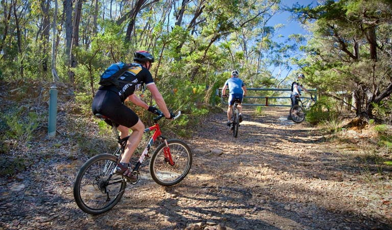 Three mountain bike riders cycle to the gate on Andersons trail in Blue Mountains National Park. Photo: Nick Cubbin/OEH