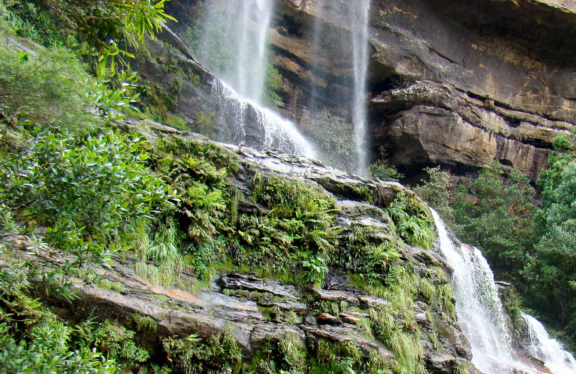 Katoomba Falls, Furber Steps to Scenic Railway walk, Blue Mountains National Park. Photo: Steve Alton/OEH