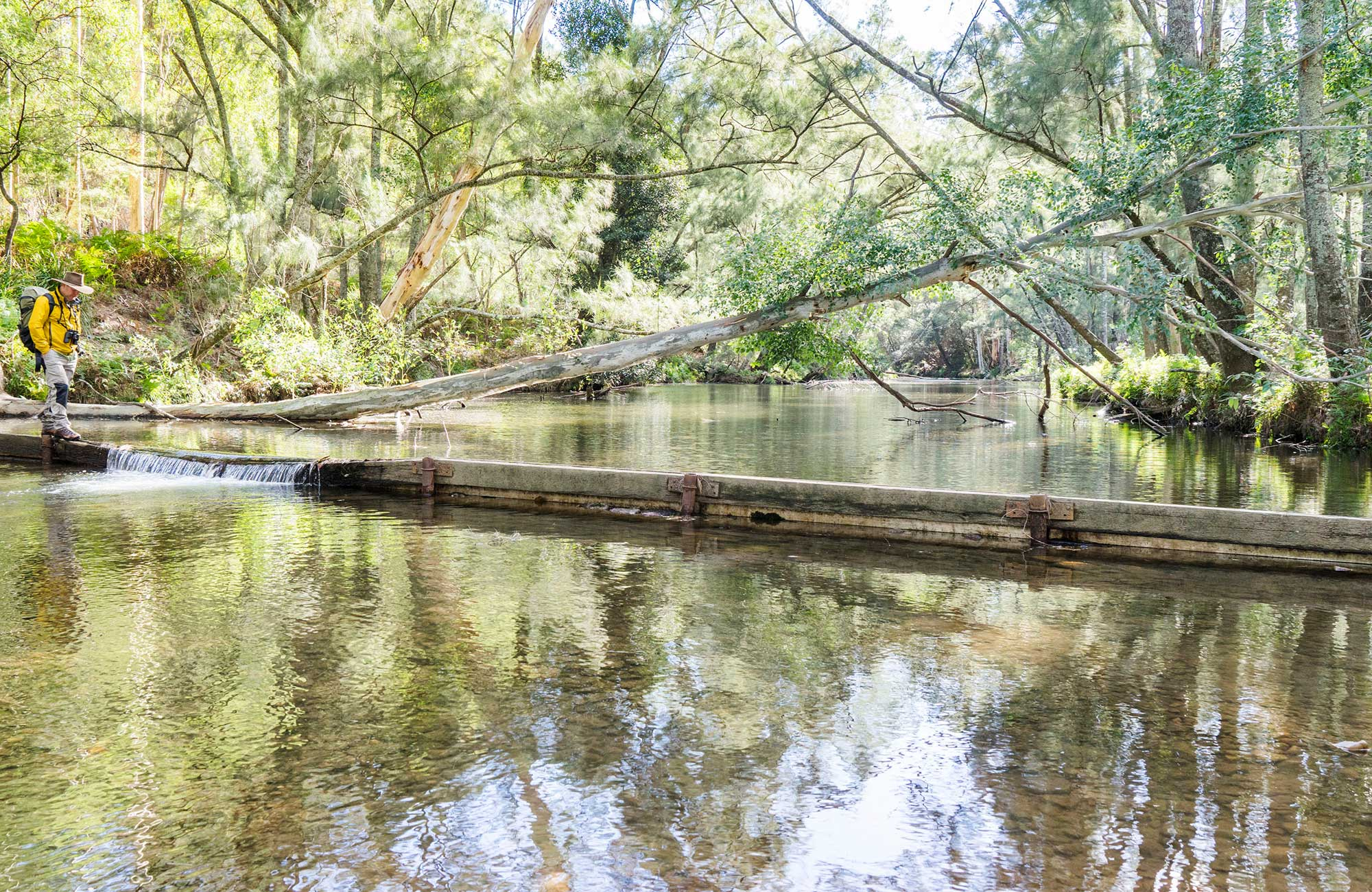 A hiker crosses the Kedumba River, Blue Mountains National Park. Photo: Simone Cottrell/OEH.